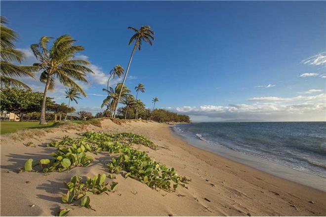 Kihei condo rental: Maui Sunset - 1BR Condo #A-302